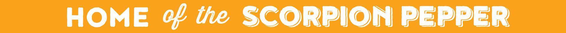 Quicky Pizza Luna Creative Graphic Design San Antonio Graphic Design Slogan